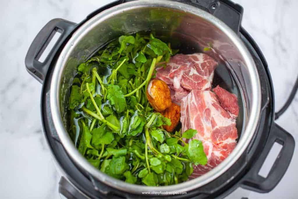 water watercress pork bone and honey dates in the pressure cooker