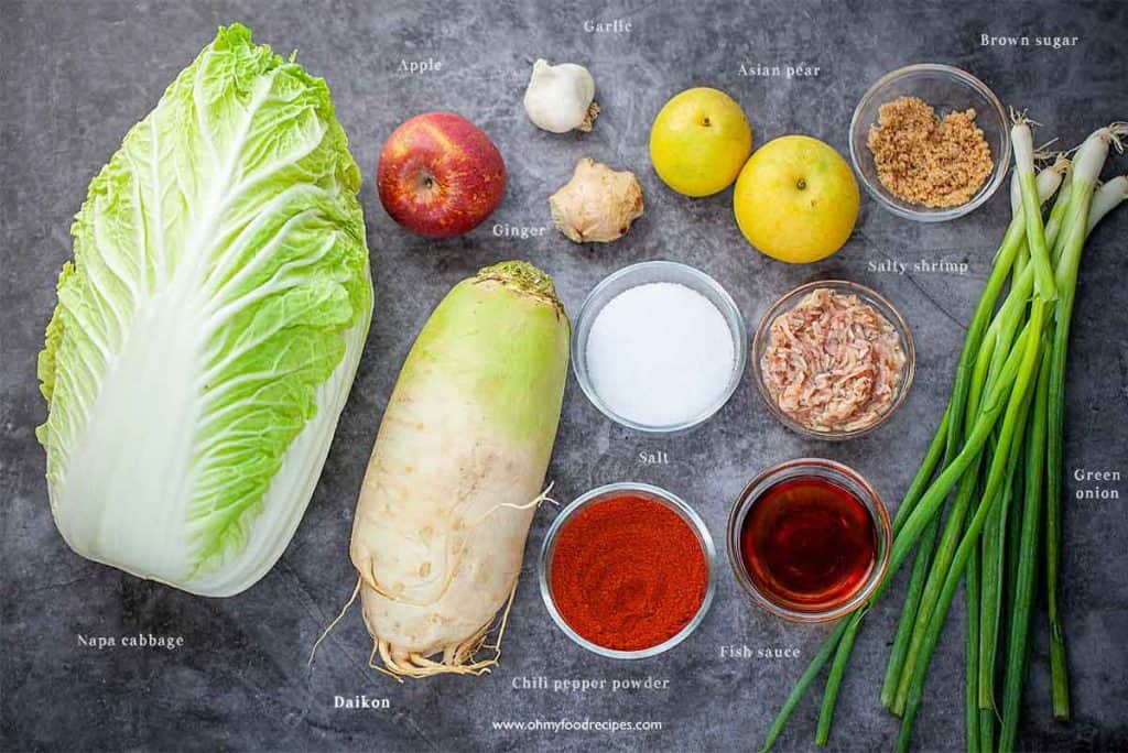 homemade easy kimchi ingredients