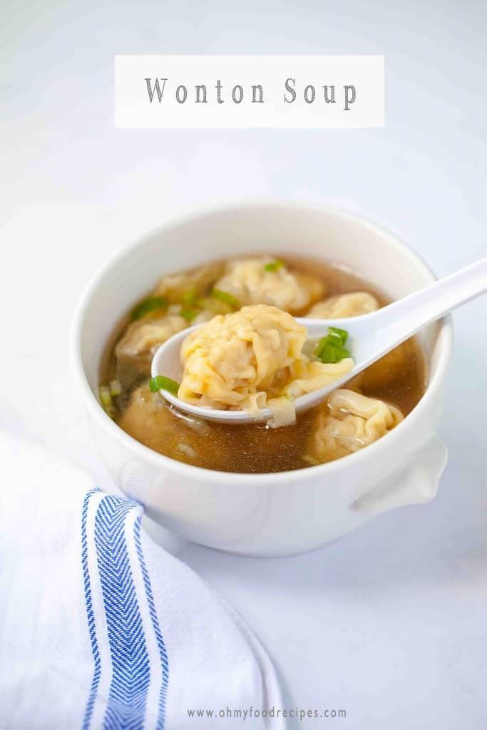wonton on a spoon in wanton soup 雲吞 with green onion