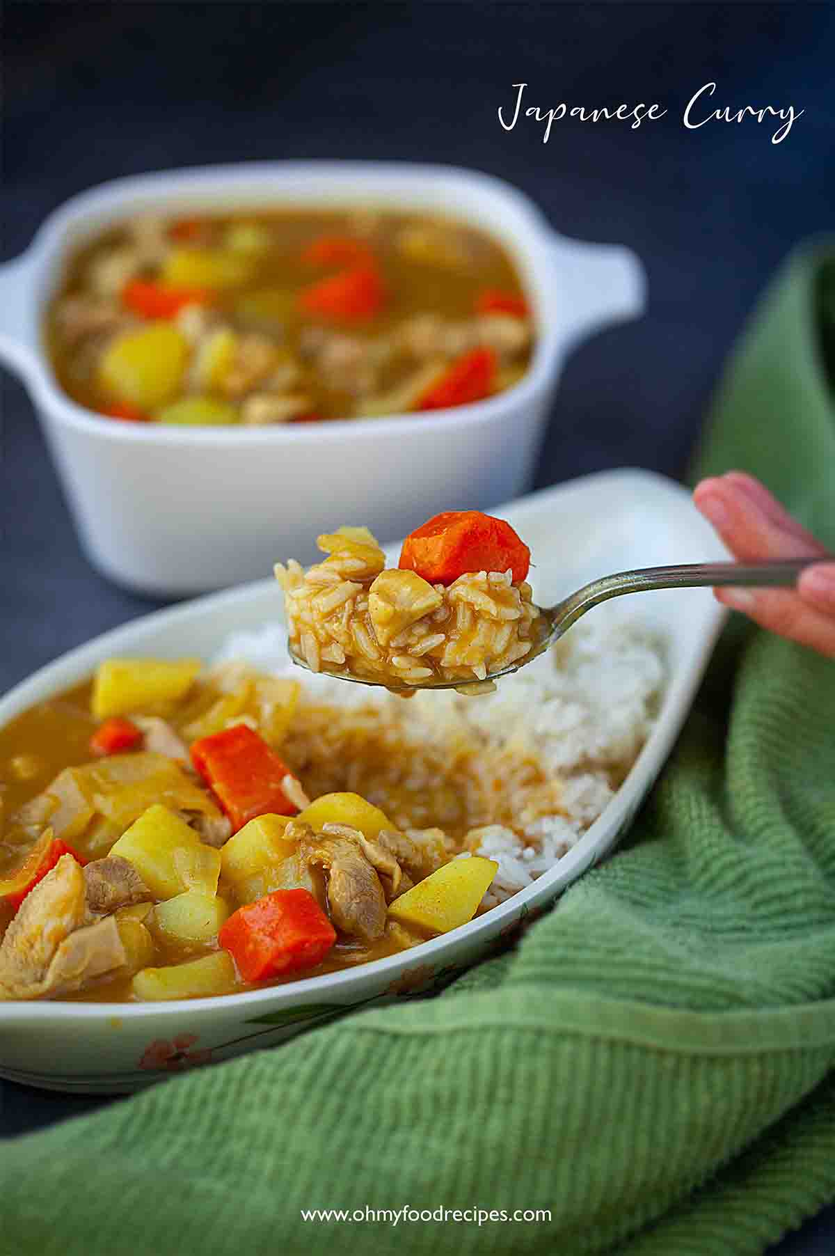 Japanese chicken curry on the spoon