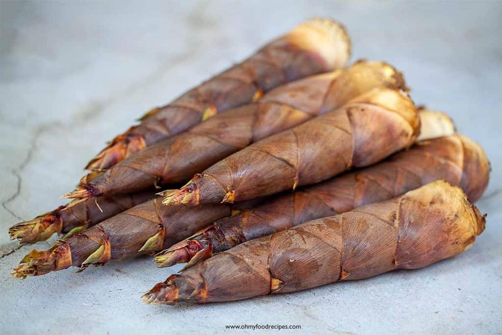 fresh raw bamboo shoots